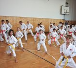 karatedo-stekly-z-s