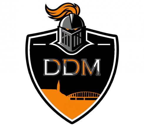 hokejbal-rytiri-ddm